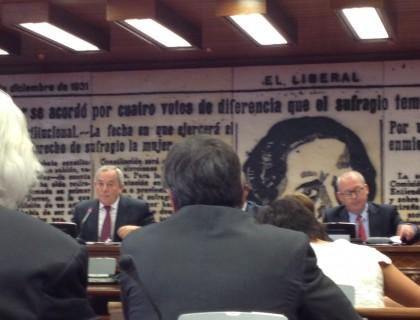 Solchaga_Senado2014_02