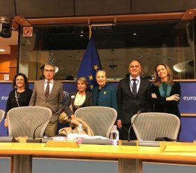 Organizadores: Asamblea Eurolat (Parlamento Europeo): Ramón Jáuregui, Javier Fernández y Trinidad Noguera; por Fundación Euroamérica, Benita Ferrero-Waldner, Luisa Peña y Patricia Alfayate