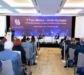 público asistente V Foro México- UE