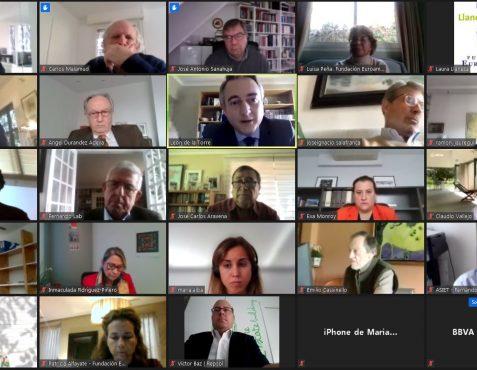 Asistentes al encuentro online 2