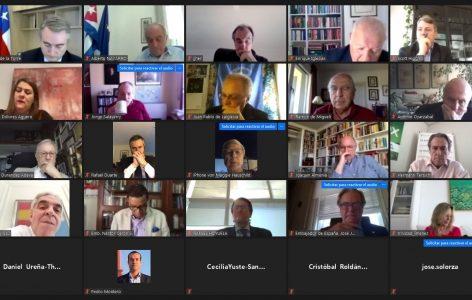 Participantes en el encuentro online 2